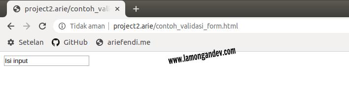 mengisi-input-Javascript-Keperluan-validasi-form-lamongandev.com